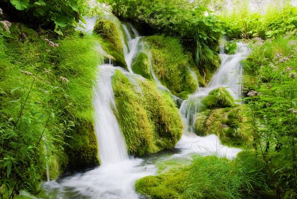 ріки води живої