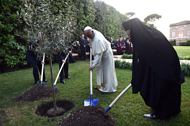 Middle East presidents, church leaders plant olive tree after invocation for peace in Vatican Gardens