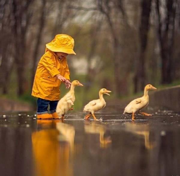 діти природа